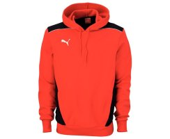 Puma Foundation Hooded Sweat, Kinder Sweatshirt, Rot...
